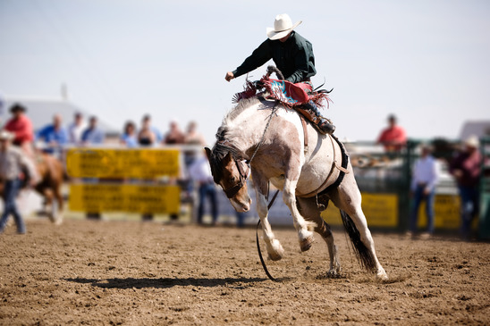 Rodeo in Arizona